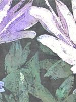 """Mendel Farewell ©Paige Mortensen Watercolour 12x36\"""" $425"""