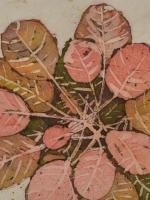 Planter Patterns 2