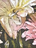 """Soft Pinks ©Paige Mortensen Watercolour Batik 24 x 8\"""""""